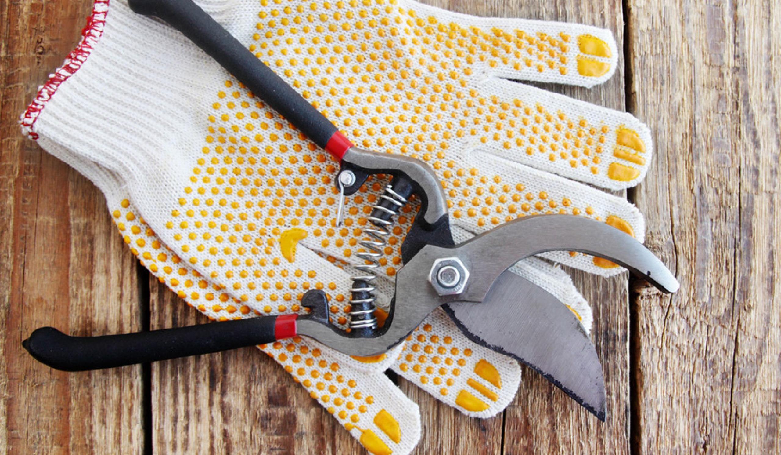 Garden maintenance and outdoor jobs